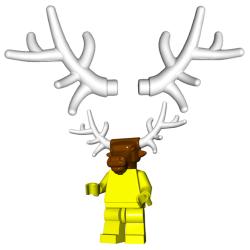 Antlers (Pair)