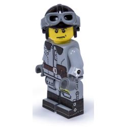 WWII Einde Oorlog Duitse Piloot