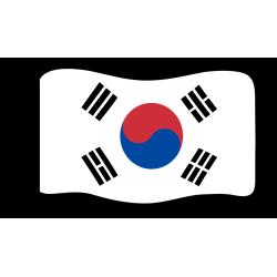 Flag : South Korea