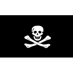 Vlag: Piraten Vlag